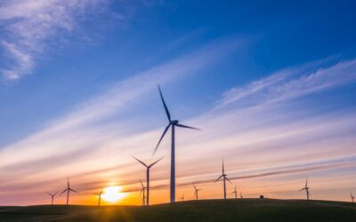 Requirements for change in policy around environmental impact assessments on Windfarms